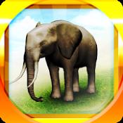 Androidアプリ「REAL ANIMALS HD (Full)」のアイコン