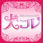 Androidアプリ「Dog's Collection 犬コレ」のアイコン