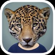 Androidアプリ「Animal Face」のアイコン