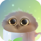 Androidアプリ「Cup Of Owl Pro」のアイコン