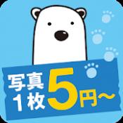 Androidアプリ「しろくまフォト - 5円写真プリント」のアイコン