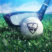 Androidアプリ「WGT Golf」のアイコン
