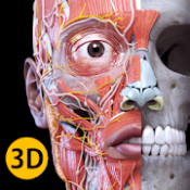 Androidアプリ「解剖学 - 3Dアトラス」のアイコン