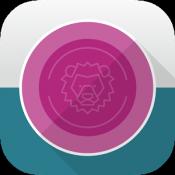 Androidアプリ「コインライン - お金のソリティアパズル」のアイコン