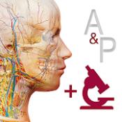 Androidアプリ「解剖学的構造と生理学」のアイコン