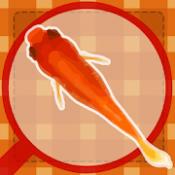 Androidアプリ「金魚すくい(お祭)」のアイコン