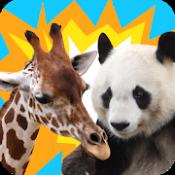 Androidアプリ「どうぶつタワーバトル - のんびり対戦ゲーム」のアイコン