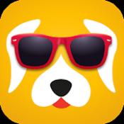 Androidアプリ「Pedigree SelfieSTIX」のアイコン