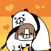 Androidアプリ「パンダと犬 いつでも犬かわいーぬ」のアイコン