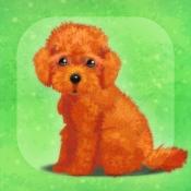 iPhone、iPadアプリ「癒しの子犬育成ゲーム〜トイプードル編〜(無料)」のアイコン