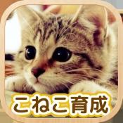 iPhone、iPadアプリ「かわいい こねこ育成げーむ」のアイコン