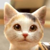 iPhone、iPadアプリ「with My CAT - 猫とくらそう -」のアイコン
