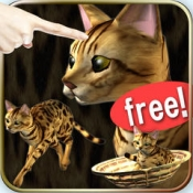 iPhone、iPadアプリ「猫っとベンガルがネコっ可愛くなでまくり遊べる無料ペットねこアプリ!」のアイコン
