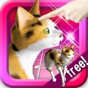 iPhone、iPadアプリ「三毛猫にタッチ! ねこの鳴き声可愛い、いつでも遊ぶペット無料ネコアプリ!」のアイコン