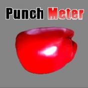 iPhone、iPadアプリ「PunchMeter」のアイコン