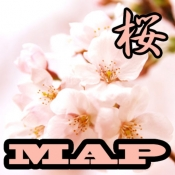 iPhone、iPadアプリ「桜マップ」のアイコン