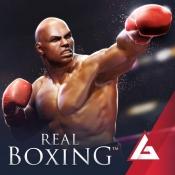 iPhone、iPadアプリ「リアル ボクシング」のアイコン