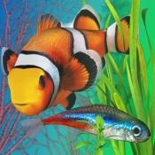 iPhone、iPadアプリ「Fish Farm 2」のアイコン