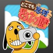 iPhone、iPadアプリ「どこでも志村どうぶつ園」のアイコン