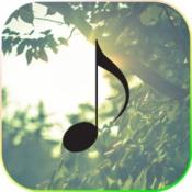iPhone、iPadアプリ「癒しの音楽まとめ」のアイコン