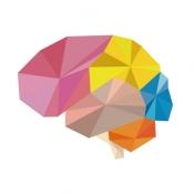iPhone、iPadアプリ「Brain Wars (ブレインウォーズ)」のアイコン
