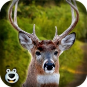 iPhone、iPadアプリ「-森林のシカのハンター大きな降圧撮影サファリ楽しいゲームをプレイします。」のアイコン