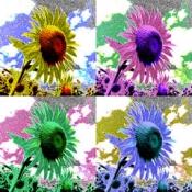 iPhone、iPadアプリ「Art Serigraphy - 現代アート・モダンアート風の画像をカメラの写真やアルバムの画像やイラストを編集加工して作る無料の写真加工・画像編集カメラフォトフィルターアプリ -」のアイコン