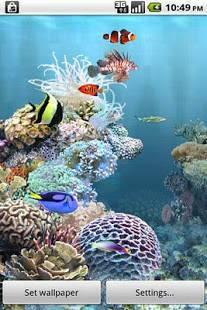 Androidアプリ「aniPet海洋水族館ライブ壁紙(無料版)」のスクリーンショット 1枚目