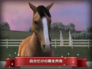Androidアプリ「My Horse」のスクリーンショット 1枚目