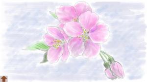 Androidアプリ「大人の塗り絵(花)」のスクリーンショット 5枚目