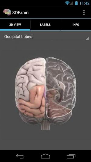 Androidアプリ「3D Brain」のスクリーンショット 1枚目