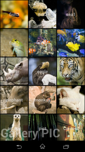 Androidアプリ「Gallery Pic」のスクリーンショット 2枚目