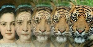 Androidアプリ「Zooface - GIF Animal Morph」のスクリーンショット 1枚目