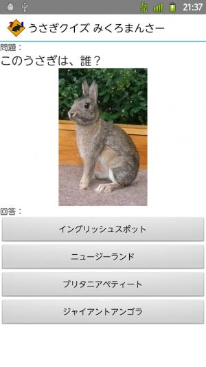Androidアプリ「うさぎクイズ みくろまんさー 【無料で遊べるウサギクイズ】」のスクリーンショット 2枚目