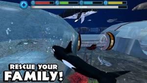 Androidアプリ「Orca Simulator」のスクリーンショット 4枚目