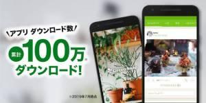 Androidアプリ「GreenSnap - 植物・花の名前が判る写真共有アプリ」のスクリーンショット 2枚目