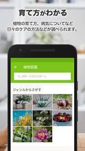 Androidアプリ「GreenSnap - 植物・花の名前が判る写真共有アプリ」のスクリーンショット 4枚目