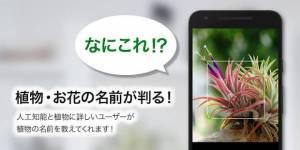 Androidアプリ「GreenSnap - 植物・花の名前が判る写真共有アプリ」のスクリーンショット 1枚目