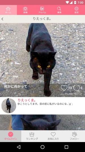 Androidアプリ「みんなでつくろう!猫図鑑」のスクリーンショット 3枚目