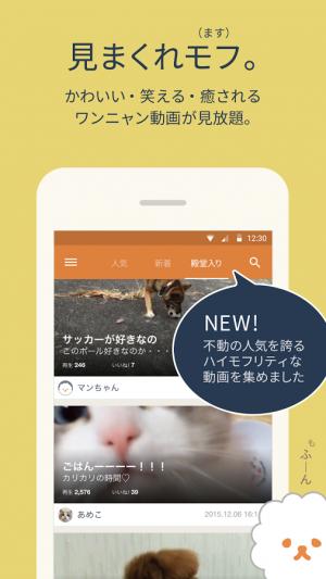 Androidアプリ「mofur(モフール) - 犬猫10秒動画を共有」のスクリーンショット 2枚目
