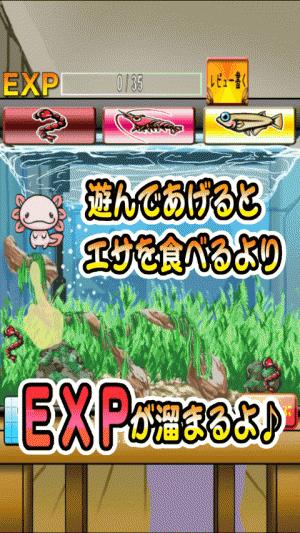 Androidアプリ「うぱの進化日記~新な出会い~」のスクリーンショット 4枚目