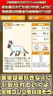 Androidアプリ「ねこカフェ★特別版★~猫を育てる楽しい育成ゲーム~」のスクリーンショット 5枚目