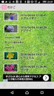 Androidアプリ「花判定機」のスクリーンショット 4枚目