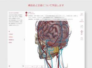 Androidアプリ「解剖学的構造と生理学」のスクリーンショット 4枚目