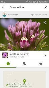 Androidアプリ「iNaturalist」のスクリーンショット 1枚目