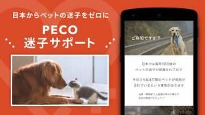 Androidアプリ「PECO(ペコ):いぬねこペット動画 かわいいどうぶつ動画で癒しをお届け」のスクリーンショット 4枚目