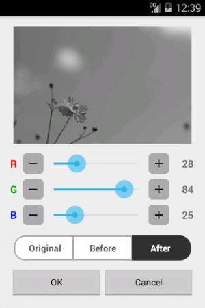 Androidアプリ「白黒写真」のスクリーンショット 4枚目