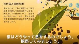 Androidアプリ「NAMOO – 植物の神秘」のスクリーンショット 2枚目