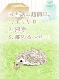 Androidアプリ「癒しのハリネズミ育成ゲーム」のスクリーンショット 5枚目