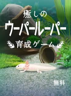 Androidアプリ「癒しのウーパールーパー育成ゲーム」のスクリーンショット 4枚目